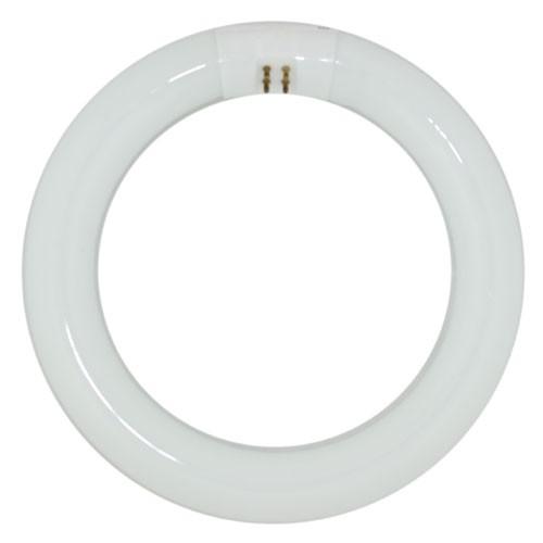 FC18T6 Circline Ballast