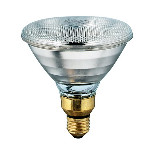 Philips Lighting 405183 - PAR38 Incandescent Lamps - E26 Base - 175W - 115-125V - Dimmable - Clear