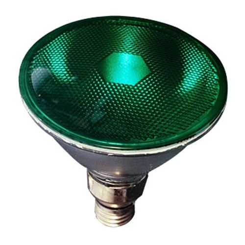 Symban 90W - 130Volts - PAR38 - Green