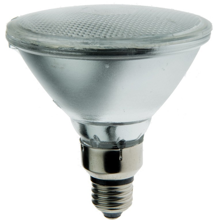 ROXI 3052 - 90W - 130Volts - PAR38 - Flood