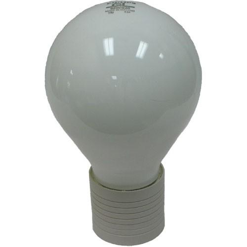 Philips QL165W/850 - Induction Lamp - 5000K Daylight