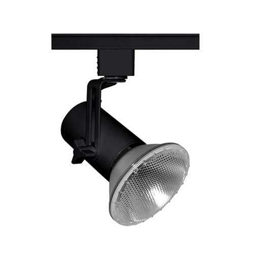 Juno Lighting T691 BL - Trac-Master Mini Swivel Universal PAR - Universal w/Universal Trac Adapter - 120V - Black