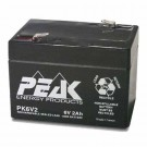 GS Battery - 6 Volt  - 2 AH - Rechargeable