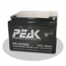 GS Battery PK12V26AB1 - Rechargeable sealed lead ACID(VRLA) battery - 12 V - 26 Ah - Bolt and Nut Type (M5)