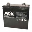 GS Battery PK12V60 - Rechargeable sealed lead ACID(VRLA) battery - 12 V - 60 Ah - Threaded Insert (M6)